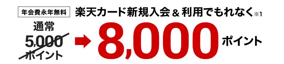 楽天カード8000P通常